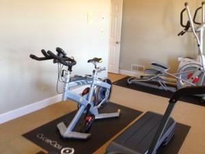 Macon organizer Katherine organizes home gyms